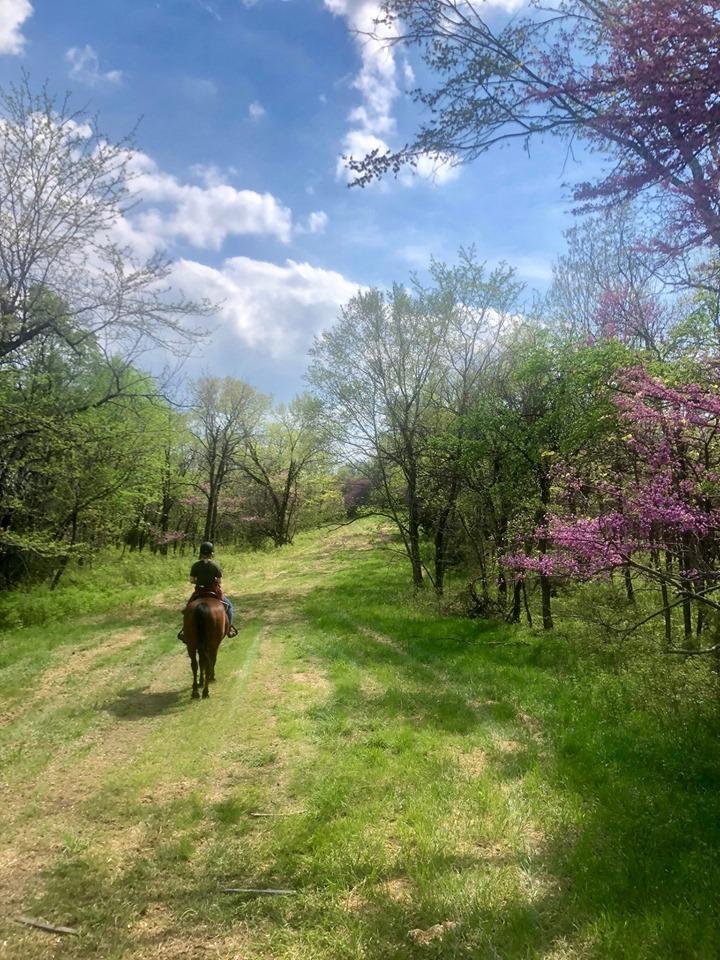 Trail-Ride-7